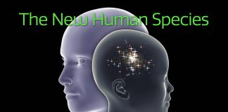 The New Human Species